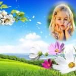 Fotomontaje de paisaje con lindas flores