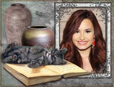 Gatito sobre libro