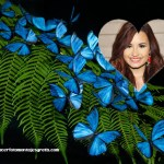 Fotomontaje de mariposas para fotos de mujeres