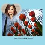 Montaje de fotos paisaje con flores