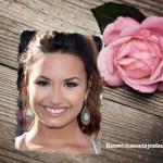 Fotomontaje de rosa