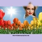 Fotomontaje con paisaje de flores