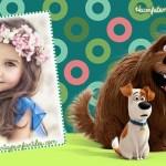 Fotomontajes de La Vida Secreta de tus Mascotas