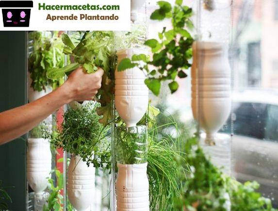 huertos colgantes con vegetales