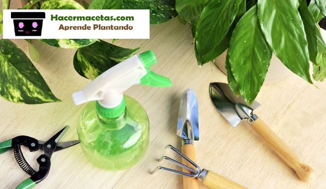 materiales necesarias para el cuidados de las orquideas y macetas