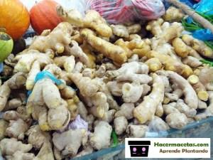 jengibre en el mercado