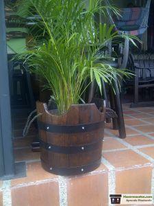 Maceteros de madera con barriles de vino reciclados para lucir palmas bellas
