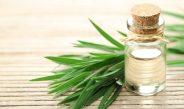 Medicine Cabinet Must-Have: Tea Tree Oil