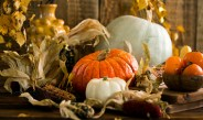 Thankful for Pumpkins and Ten Healthy Recipes