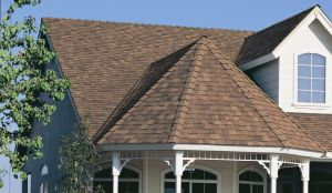 Peaked Roofing Specialists
