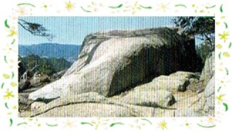 宮島の弥山登山道にある鯨岩