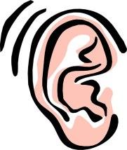 耳のアップの絵