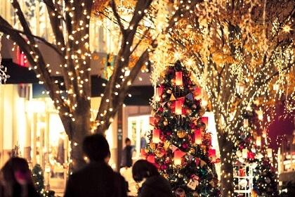12月にやってくるクリスマスのツリー