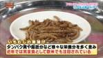ヒョウモントカゲモドキの餌に最適なミルワームの飼育方法を紹介