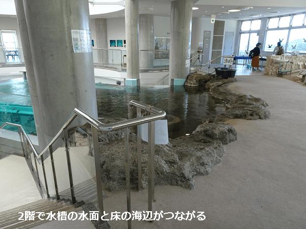 2階で水槽の水面と床の海辺がつながる