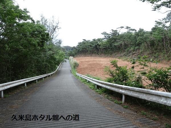 久米島ホタル館への道