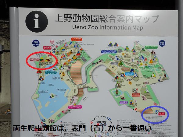 両生爬虫類館は表門(青)から一番遠い