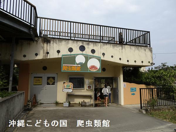 沖縄こどもの国 爬虫類館