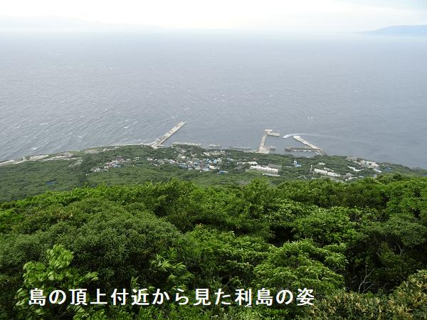 島の頂上付近から見た利島の姿