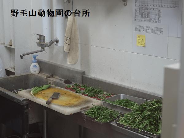 野毛山動物園の台所