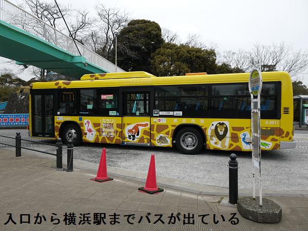 入口から横浜駅までバスが出ている