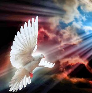 Los Cinco Minutos del Espíritu Santo - 29 de septiembre
