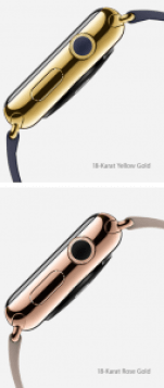 Apple Watch Edition, Hack4Life, Fabian Geissler, Gold, 18 karat
