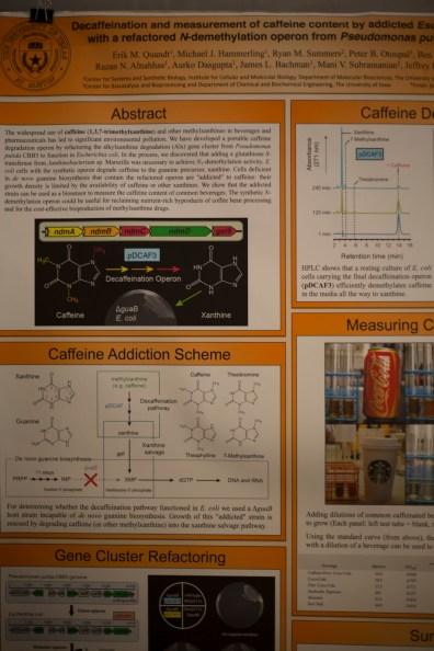 e_coli_ut_austin_experiment2