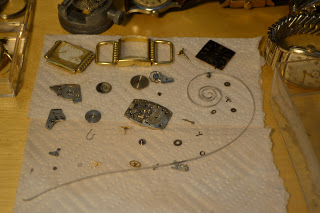 Elgin Mens wristwatch drying after cleaning, all parts shown disassembled.