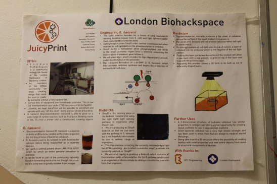 London Biohackspace