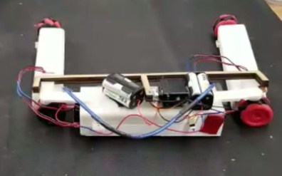 Car Robot or Snake Robot?
