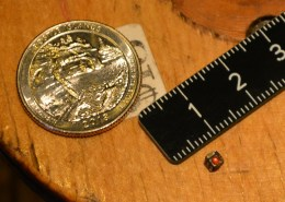 US Quarter for scale (ruler is metric)