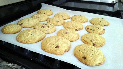 They're about as thick as regular cookies.