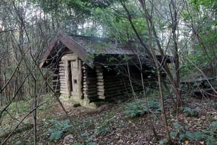 One of the scouting buildings dotted throughout the woodland.