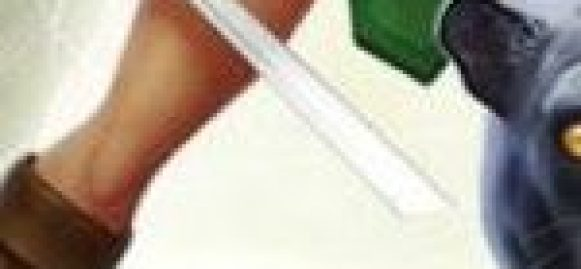 Download Portal Knights apk