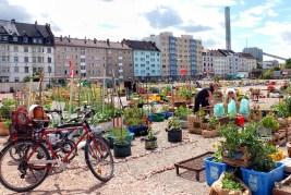 Hafengarten