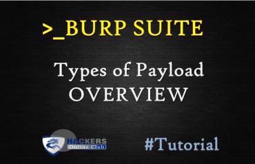 Burp Suite Payload Overview