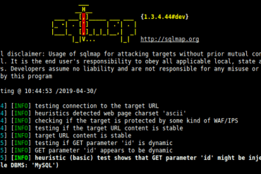 SQL Injection Testing Using SQLmap