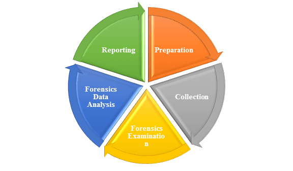Digital Forensics Process in India