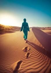 NorthAfrican_Desert