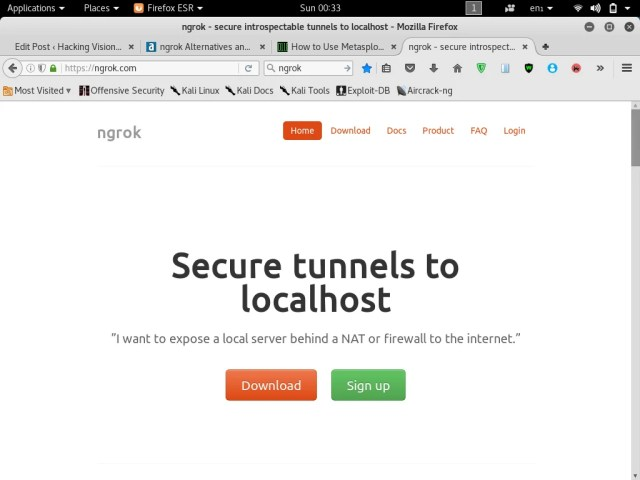ngrok-localhost