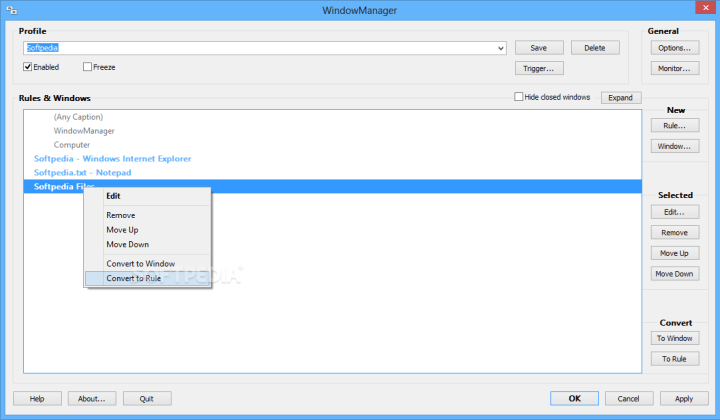WindowManager Crack 2020 v7.4 2
