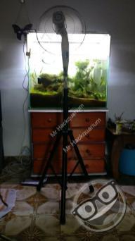 Refroidissement de l'aquarium Matouba par évaporation