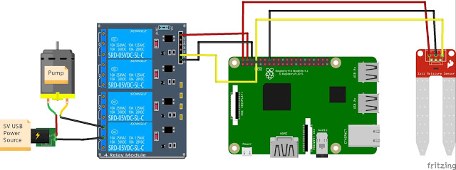 Raspberry Pi Automated Plant Watering with Website  Hacksterio