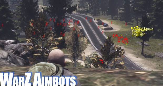 warz aimbots