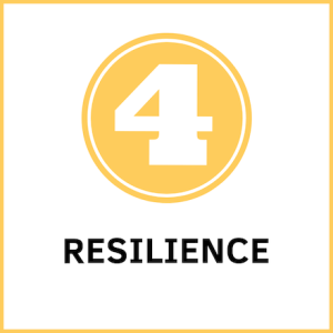 Entrepreneurial Mindset Characteristic_ resilience