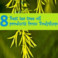 8 Amazing Tea tree oil products from The Body shop