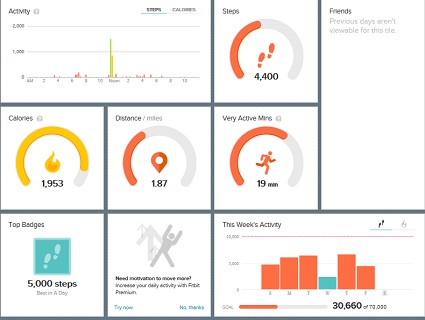 fitbit-day8