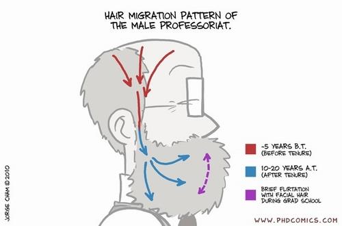phd-comics-professoriat-hair-growth