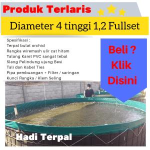 kolam terpal diameter 4